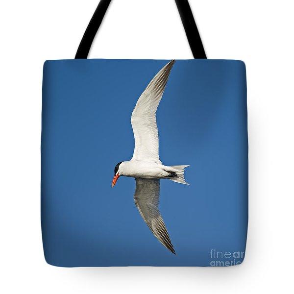 Airborne... Tote Bag by Nina Stavlund