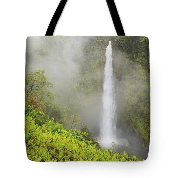 Akaka Falls Akaka Falls State Park Tote Bag by Stuart Westmorland