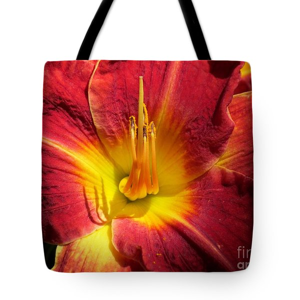 Tote Bag featuring the photograph Akemi by France Laliberte