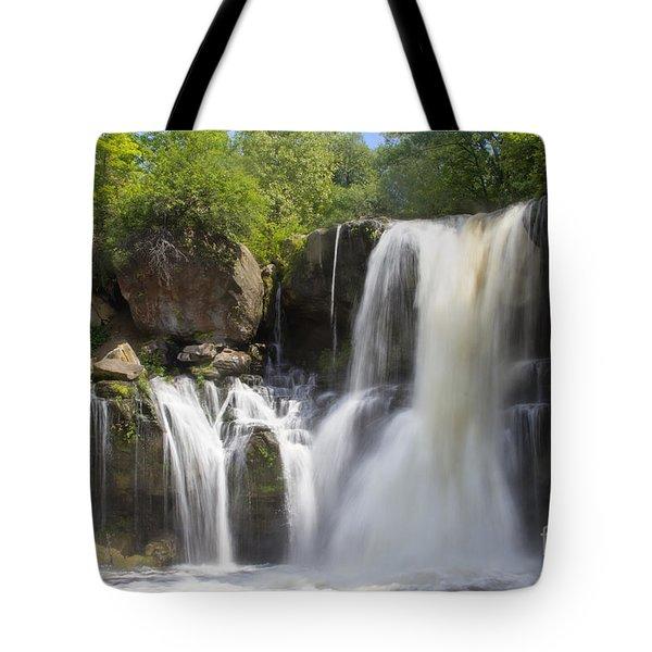Akron Falls Tote Bag by Darleen Stry