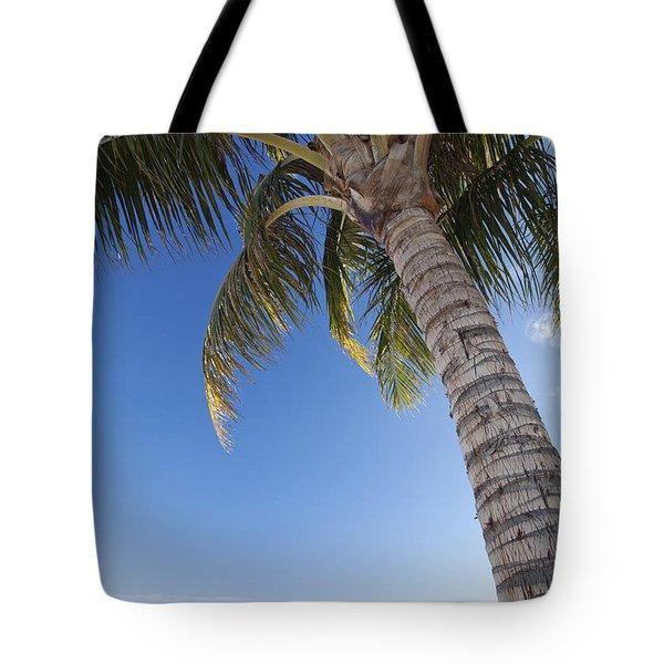 Ala Moana Beach Tote Bag by Brandon Tabiolo