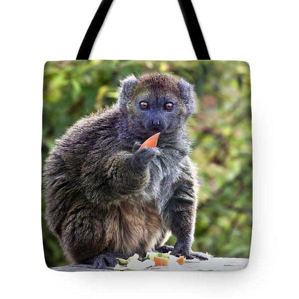 Alaotran Gentle Lemur Tote Bag