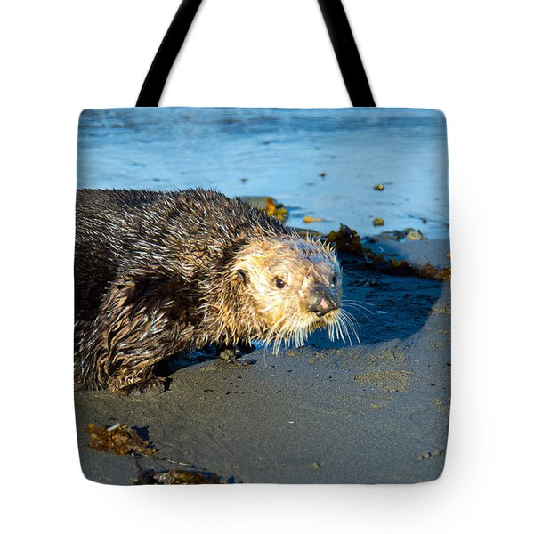 Alaska Sea Otter Tote Bag