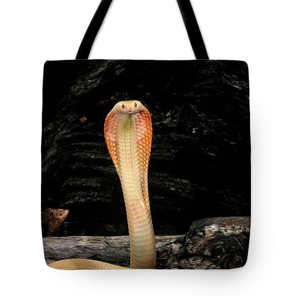 Albino Monocled Cobra Naja Naja Tote Bag