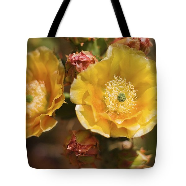 Tote Bag featuring the photograph 'albispina' Cactus #2 by Richard J Thompson