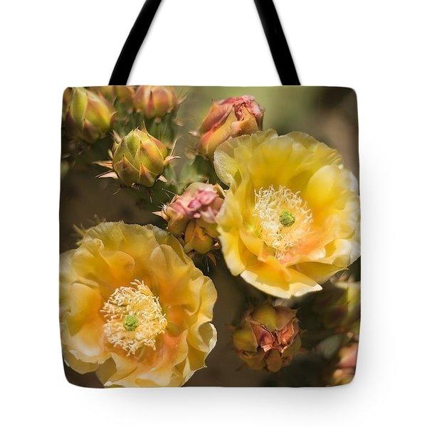 'albispina' Cactus Blooms Tote Bag