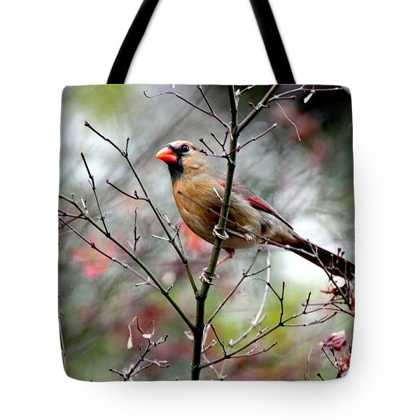 Alert - Northern Cardinal Tote Bag
