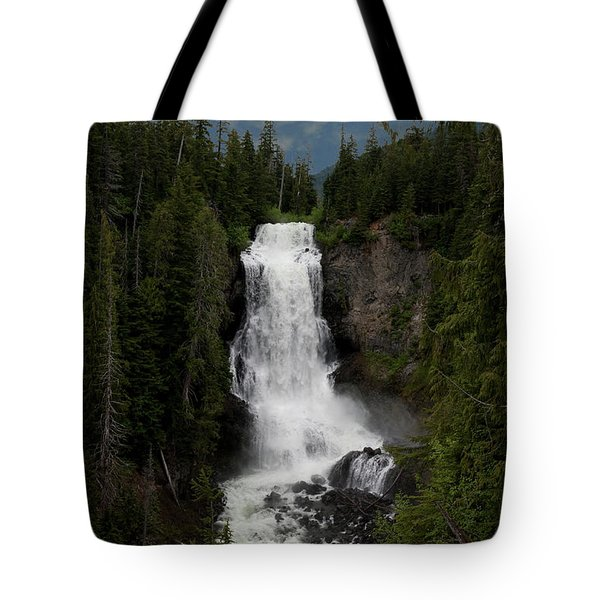 Tote Bag featuring the photograph Alexander Falls by Rod Wiens