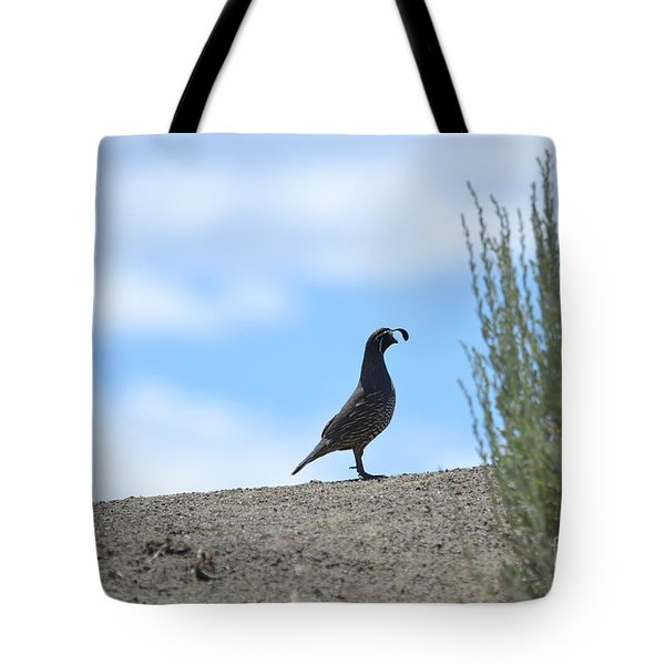All Clear Tote Bag by Laurianna Taylor