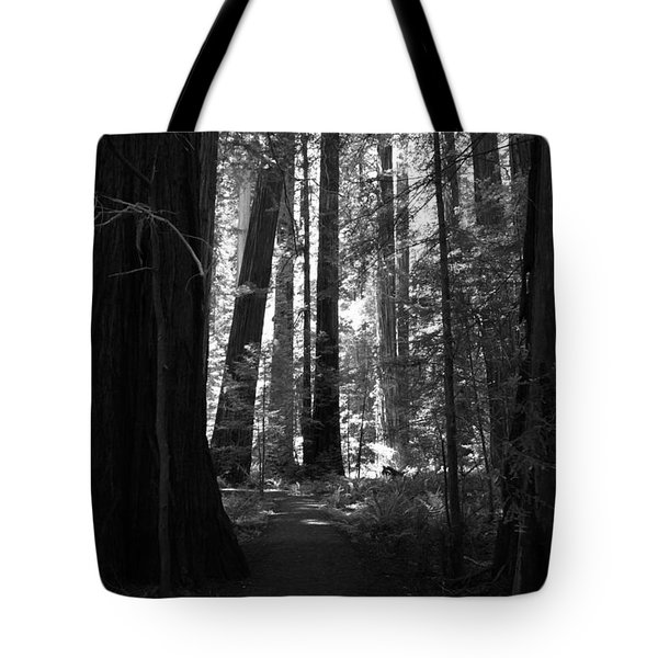 All Is Quiet Tote Bag by Laurie Search