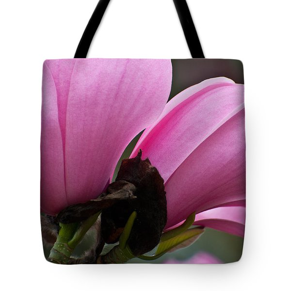Tote Bag featuring the photograph Pink Magnolia by Sabine Edrissi
