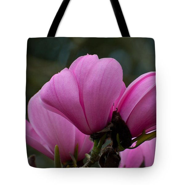 Tote Bag featuring the photograph Pink Magnolia 2 by Sabine Edrissi