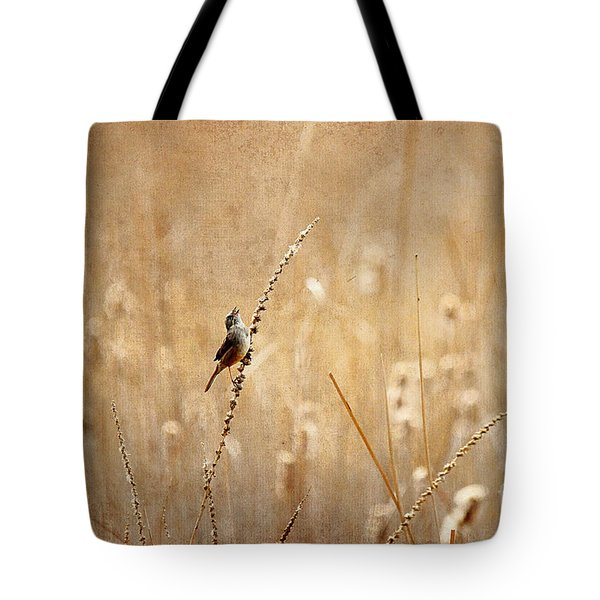All Rejoicing Tote Bag