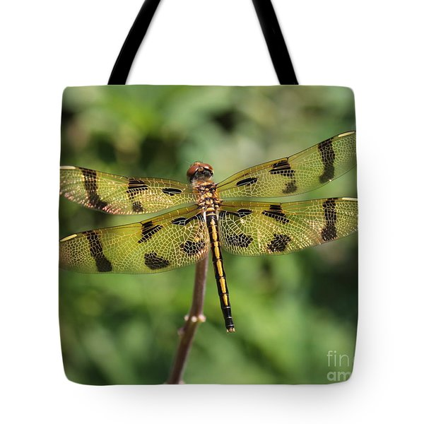 Tote Bag featuring the photograph All That Glitters Is Gold by Kenny Glotfelty