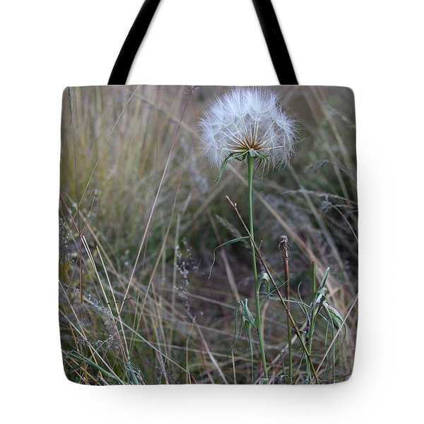 Tote Bag featuring the photograph All The Small Things by Ruth Jolly