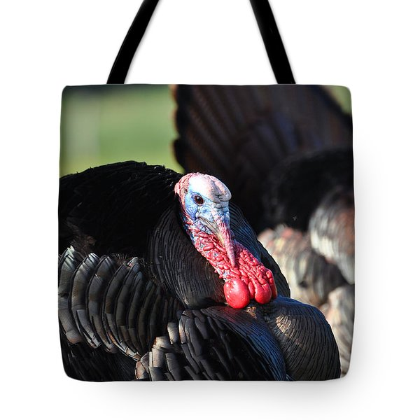 All Turkey Tote Bag by Todd Hostetter