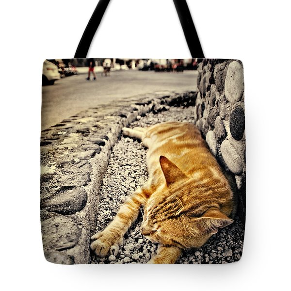 Tote Bag featuring the photograph Alley Cat Siesta In Grunge by Meirion Matthias