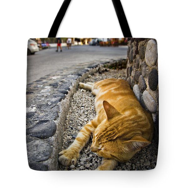 Tote Bag featuring the photograph Alley Cat Siesta by Meirion Matthias