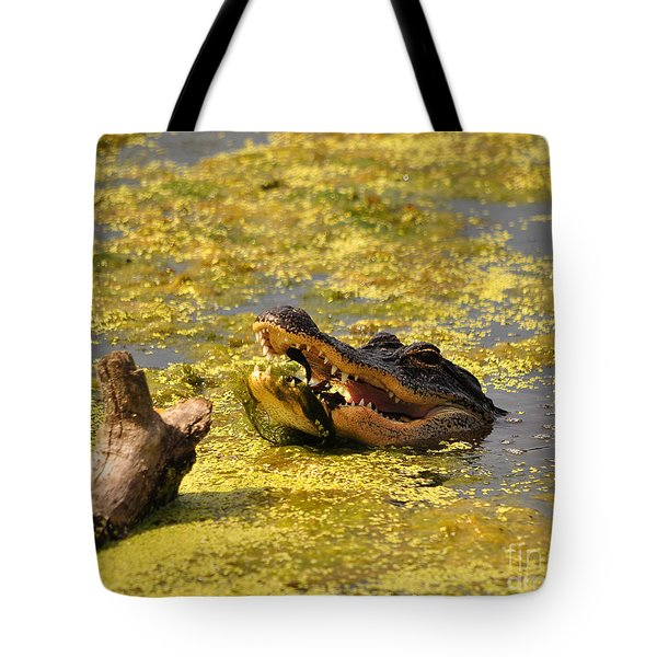 Alligator Ambush Tote Bag by Al Powell Photography USA