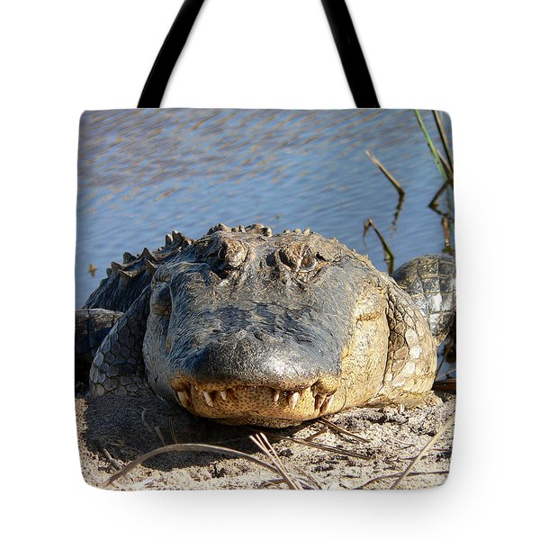 Alligator Approach Tote Bag by Al Powell Photography USA