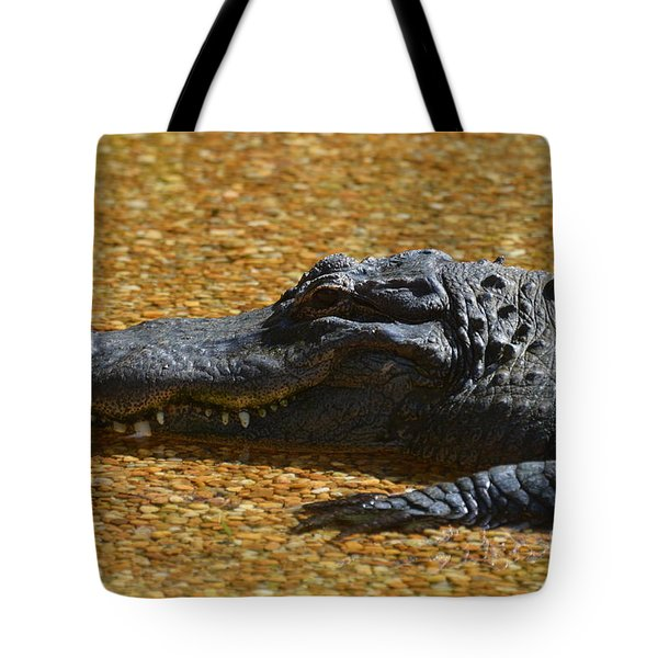 Alligator Tote Bag by DejaVu Designs