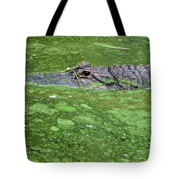 Alligator In Swamp Tote Bag by Aimee L Maher Photography and Art Visit ALMGallerydotcom