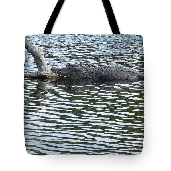 Tote Bag featuring the photograph Alligator Resting On A Log by Ron Davidson