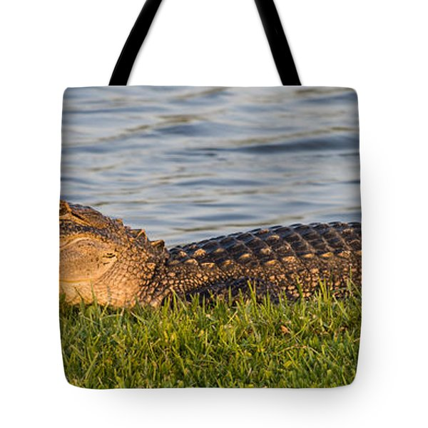 Alligator Smile Tote Bag by Ed Gleichman