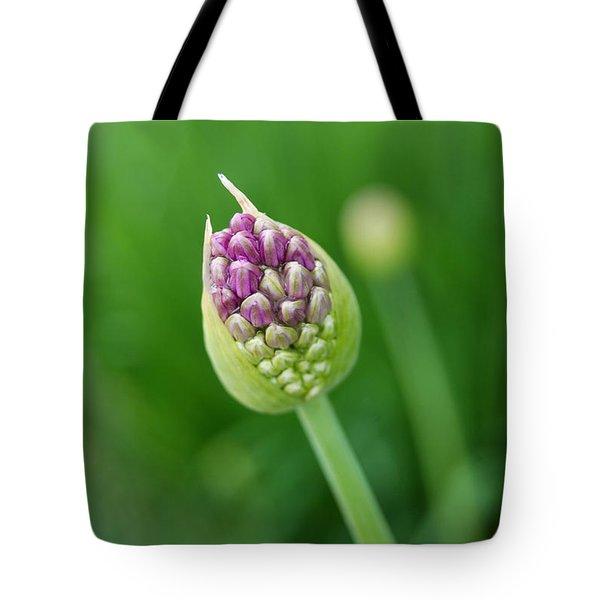 Tote Bag featuring the photograph Allium Flower by Eva Kaufman
