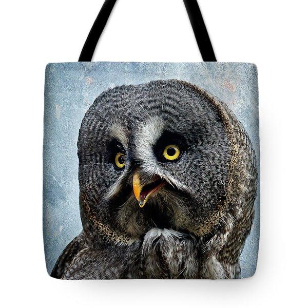 Allocco Della Lapponia - Tawny Owl Of Lapland Tote Bag