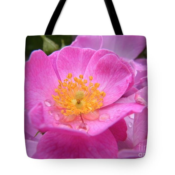 Tote Bag featuring the photograph Alluring by Agnieszka Ledwon