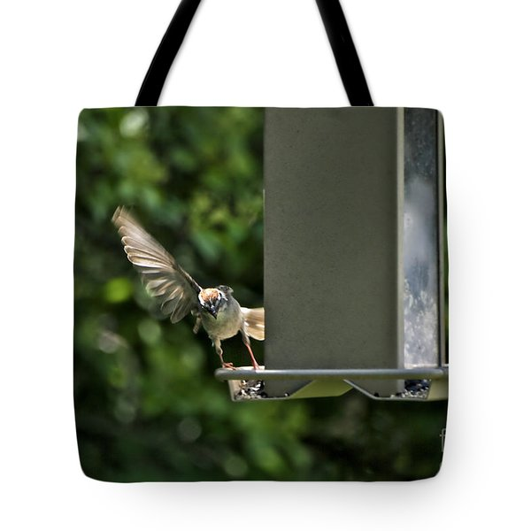 Tote Bag featuring the photograph Almost A Ruff Bird Landing by Thomas Woolworth