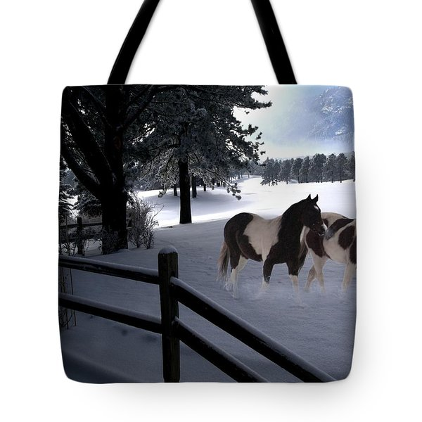 Almost Christmas Tote Bag by Bill Stephens