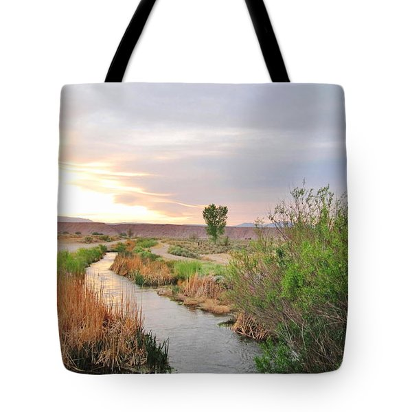 Tote Bag featuring the photograph Almost Evening by Marilyn Diaz