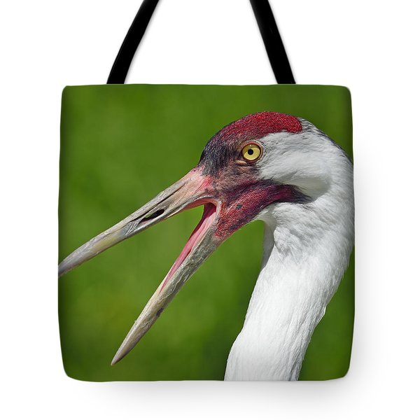 Almost Gone Tote Bag by Tony Beck