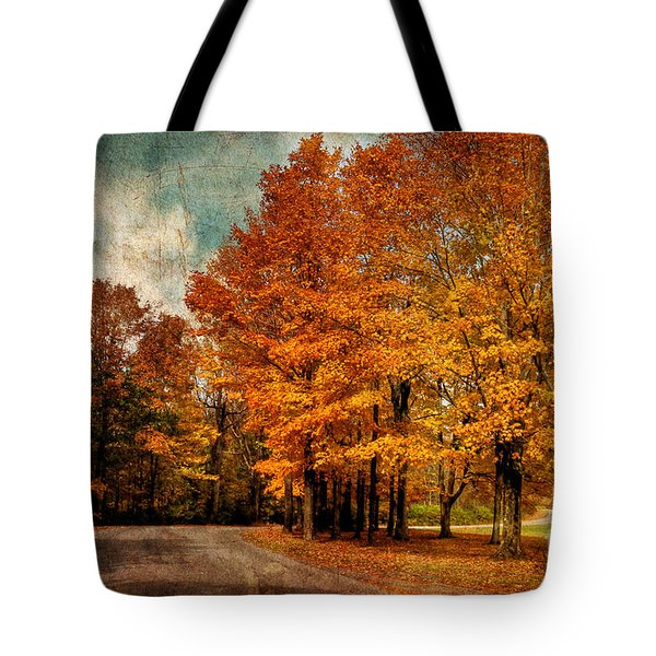 Almost Home Tote Bag by Lois Bryan