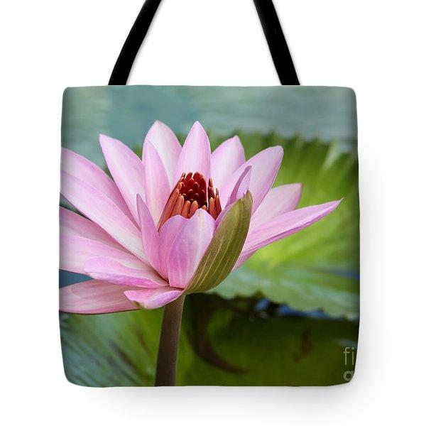 Almost In Full Bloom Tote Bag by Sabrina L Ryan