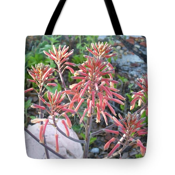 Tote Bag featuring the photograph Aloe In Bloom by Belinda Lee