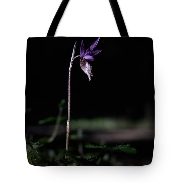 Tote Bag featuring the photograph Alone In The Forest by Betty Depee