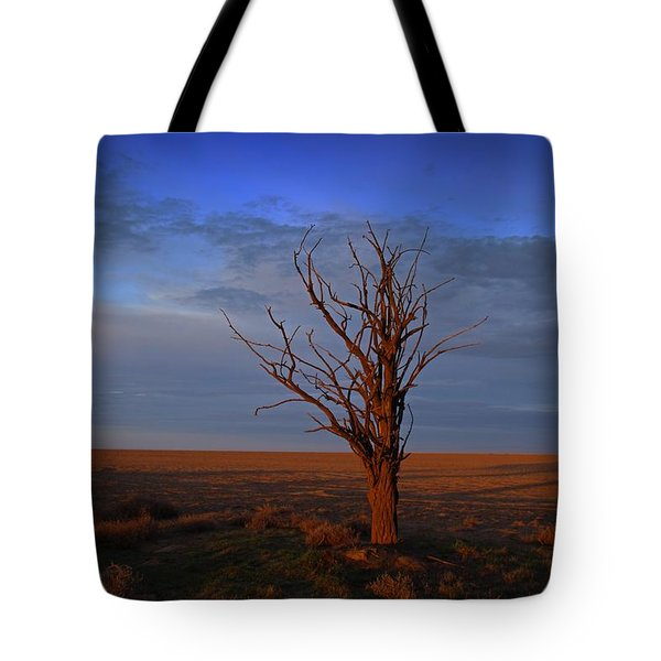 Tote Bag featuring the photograph Alone Yet Not Alone by Lynn Hopwood