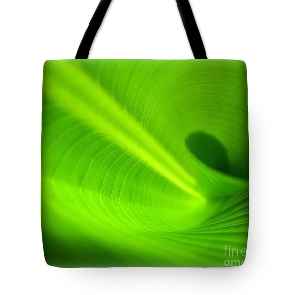 Along The Curve Tote Bag by C Ray  Roth