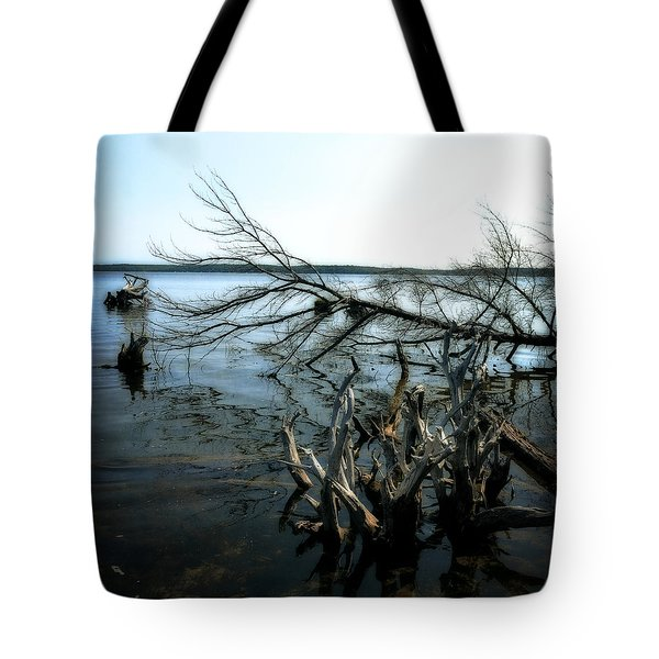 Along The Lost Lake Trail Tote Bag by Michelle Calkins