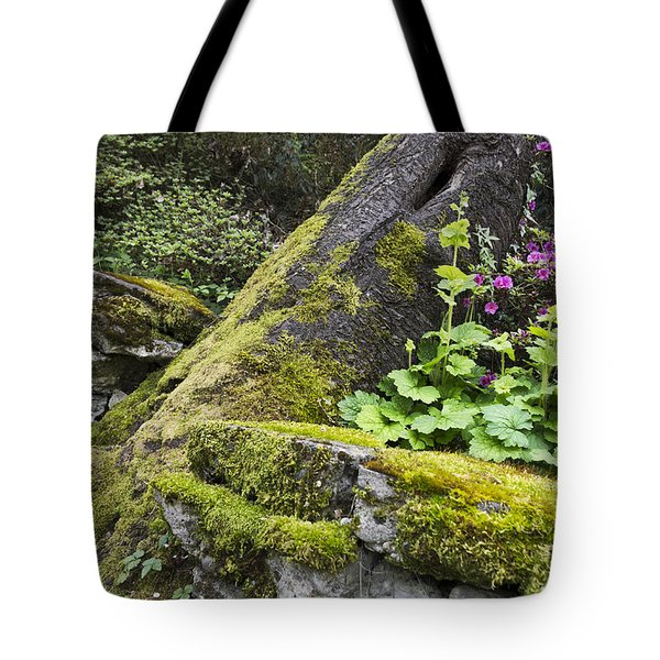 Along The Pathway Tote Bag