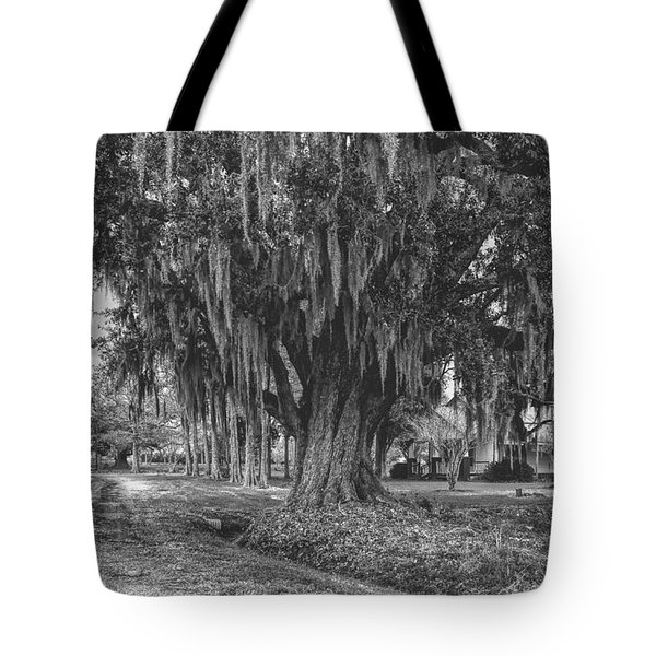 Along The River Road Near Vacherie La Tote Bag