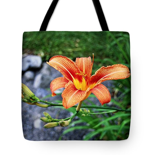 Along The Rocks Tote Bag