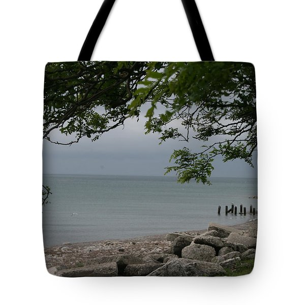 Tote Bag featuring the photograph Along The Shore by Kay Novy