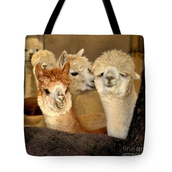 Alpaca Friends Tote Bag