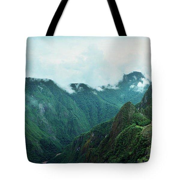Alpaca Vicugna Pacos With An Tote Bag