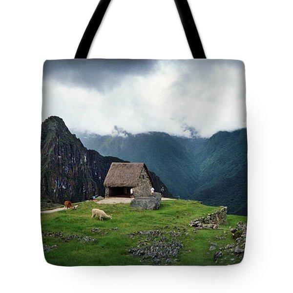 Alpacas Vicugna Pacos Grazing Tote Bag