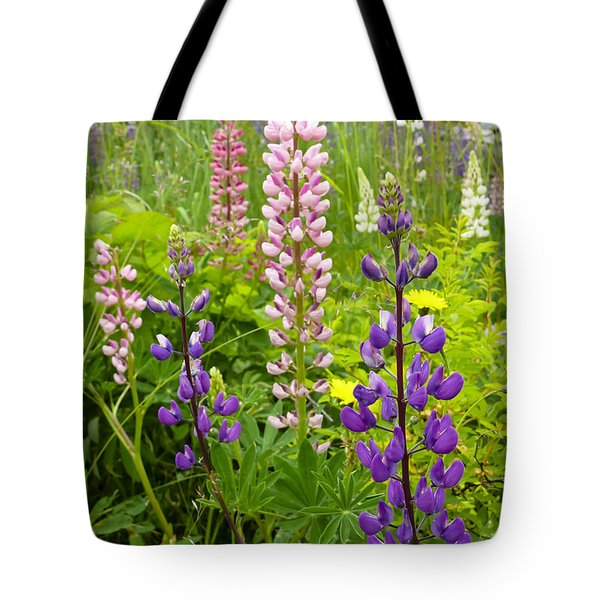 Alpine Lupines Tote Bag by Maria Janicki
